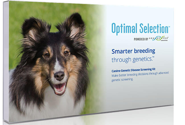 Wisdom Panel Optimal Selection Canine