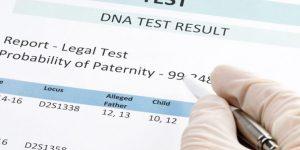 Paternity DNA Testing