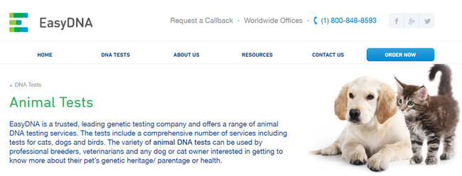 EasyDNA Animal homepage