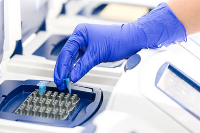 Futura Genetics dest dna technology