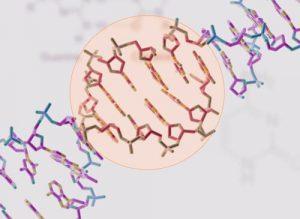 MyHeritage DNA Testing Kit