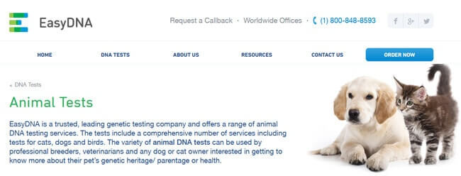 homepage EasyDNA Animal