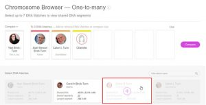 MyHeritage Chromosome-Browser