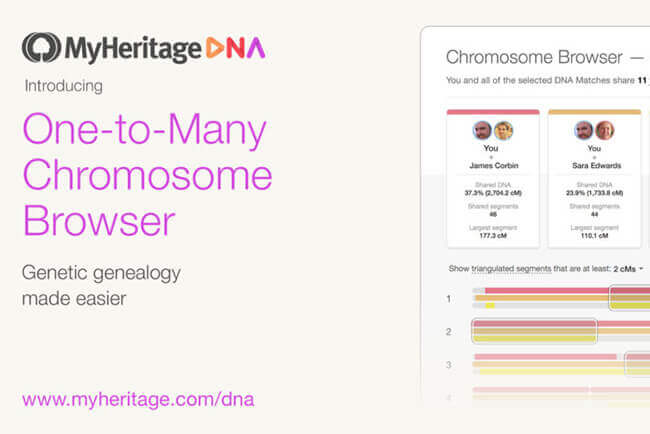 MyHeritage DNA Upgrades Its Chromosome Browser