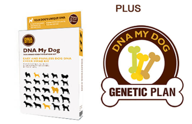 DNA My Dog test