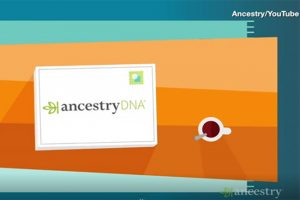 Ancestry Faces Backlash Over Updated System For Ethnicity Estimates