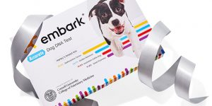 Embark Dog DNA Test Is This Year Oprah Favorite Things