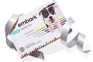 Embark Dog DNA Test Is This Year Oprah Favorite Things