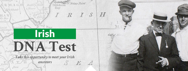 DNA-Consultants Irish DNA Test