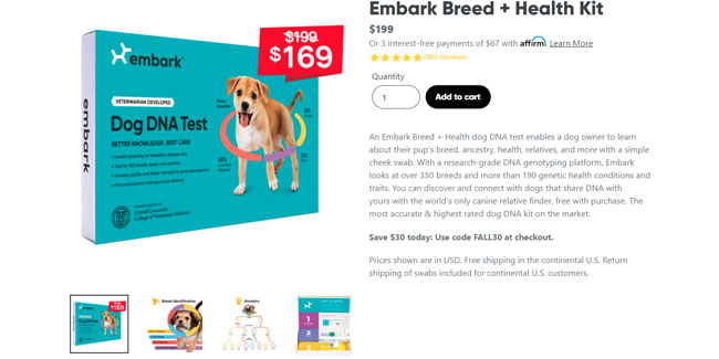 Embark Black Friday